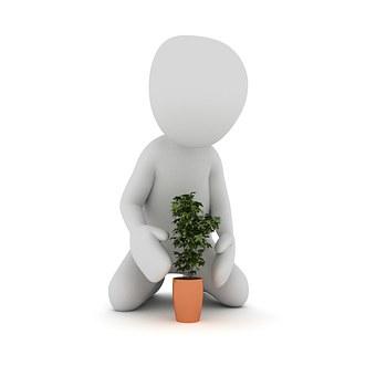 אדניות מחיר – לשדרוג הבית והגינה שלנו
